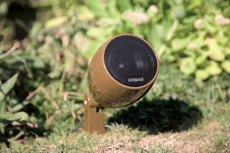 ASW35-bruin-05.jpg